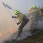 ¿Cómo informar sobre incendios forestales?