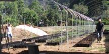 Invernadero construido por Cooperativas sin Fronteras y Agriterra en Costa Rica.