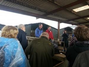 Periodistas en la granja irlandesa de los Hannon